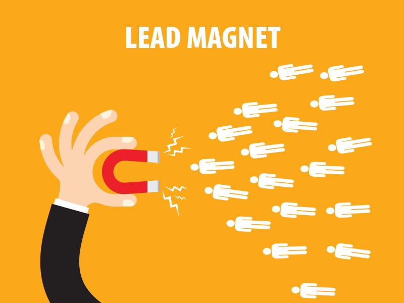 как работает лид-магнит
